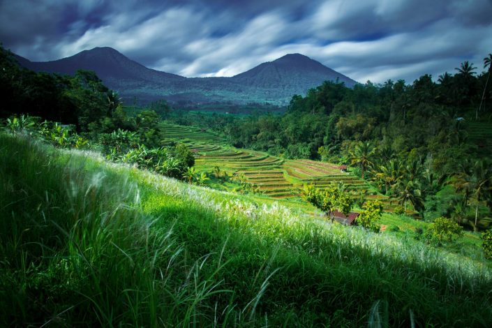 Rice fields and volcanoes in Bali